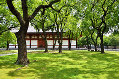 Green garden of Toji temple, Kyoto Japan spring. Royalty Free Stock Image