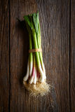 Green garlic bunch on a wooden background Royalty Free Stock Photos