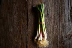 Green garlic bunch on a wooden background Stock Photography