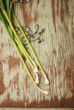 Green garlic Royalty Free Stock Image