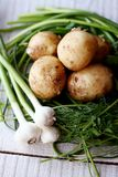 Green garlic, potatoes, whole, fresh herbs. Fresh vegetables, green garlic, potatoes, whole, fresh herbs Royalty Free Stock Images