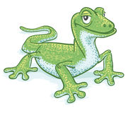 Green Gecko Stock Photos