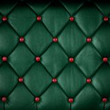 Green genuine leather Stock Image