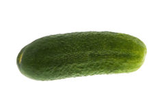 Green Gherkin Royalty Free Stock Photo