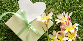 Green gift box with a bow, blank note for text and flowers. Green gift box with a bow, blank note for text and flowers, on green grass Royalty Free Stock Photo