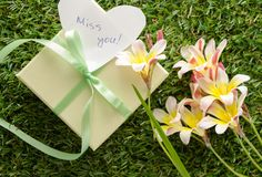 Green gift box with a bow, `Miss you`. Text and flowers, on green grass Royalty Free Stock Image