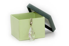 Green gift box with diamond necklace. On white Royalty Free Stock Image