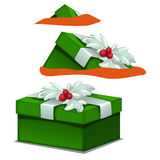 Green gift box with Holly berry decoration. Image on white background for your design needs royalty free illustration