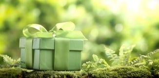 Green gift box on moss Stock Photos