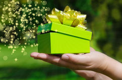 Green Gift box in woman's hands Stock Images