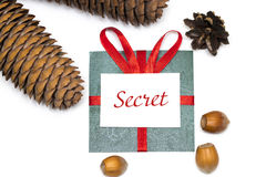 Green gift with red ribbon and pine cones on a white. Background Stock Photos