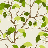 Green ginkgo leaves. Seamless pattern with green ginkgo leaves Stock Photography