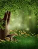 Green glade with flowers. Green forest glade with yellow flowers Royalty Free Stock Image