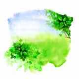 Green glade. Stock Photos