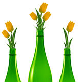 Green glass bottle. Three green glass bottles with yellow tulips Stock Photos