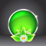 Green glass button with flowers Stock Images