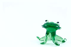 Green glass frog. Removed close up Stock Photos