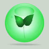 Green glass sphere with leafs inside Royalty Free Stock Photo