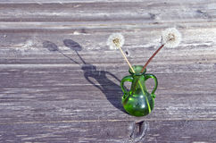 Green glass vase and dandelion seeds Royalty Free Stock Images