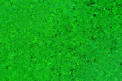 Green glassy abstract background Stock Photo