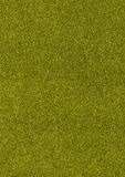 Green glitter background, abstract colorful backdrop Stock Photos