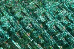 Green glitter dragon scales texture Stock Photos