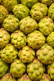 Green Globe Artichokes. For sale on a market royalty free stock photos