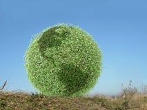Green globe in grass stock photo