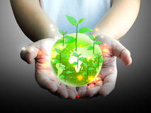 Green globe in hand. Green globe and leaf in hand Royalty Free Stock Photos