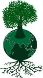 Green Globe and Tree Royalty Free Stock Image