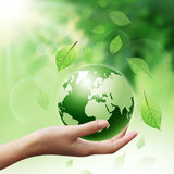 Green Globe in your hands Stock Image