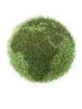 green globu Obrazy Royalty Free