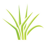 Green Glossy Grass Icon Stock Photography