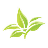 Green Glossy Leaves Icon Royalty Free Stock Image