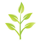 Green Glossy Leaves Icon Stock Image