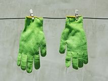 Green gloves hanging on a wire in the sunlight Royalty Free Stock Image