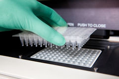 Green gloves, Thermal PCR cycler, Royalty Free Stock Images