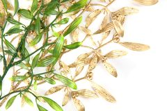 Green and gold christmas mistletoe background Stock Image