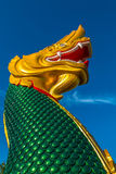 Green and Gold naga Stock Photo