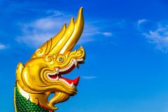 Green and Gold naga Stock Images