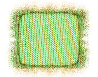 Green Gold Net. Tuscany Italy Fresh Green Net Royalty Free Stock Image