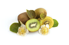 Green and golden kiwi fruit. With leaves and blossoms isolated on white royalty free stock photos