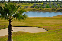 Green golf. Zaudin golf course, located  just a 10 minutes drive of the center of Seville, in the zone of the Aljarafe. It was designed by Gary Player Royalty Free Stock Photos