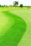 Green golf course Royalty Free Stock Images