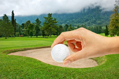 Green of  golf course Stock Image