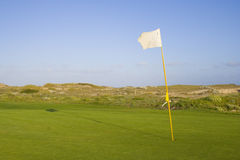 Green in a golf course Stock Images
