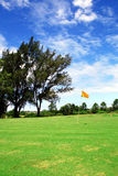 Green golf course. And blue sky Stock Photography