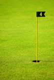 Green golf course with flagstick and hole. Close-up picture of green fairway at golf course with flagstick and hole Royalty Free Stock Image