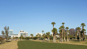 Green Golf Course Lawns in Phoenix Downtown, AZ Stock Photography