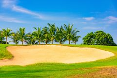 Green golf course royalty free stock photo